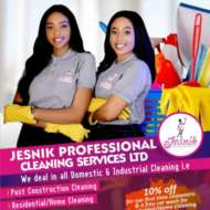 Jesnik Professional Cleaning Services LTD