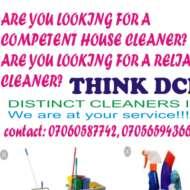 Distinct cleaners inc